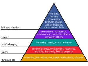 800px-maslows_hierarchy_of_needs-svg